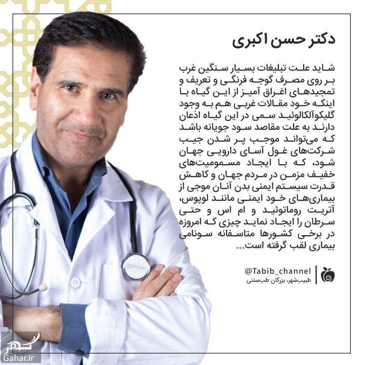 527706 Gahar ir دکتر اکبری طب سنتی + بیوگرافی دکتر اکبری