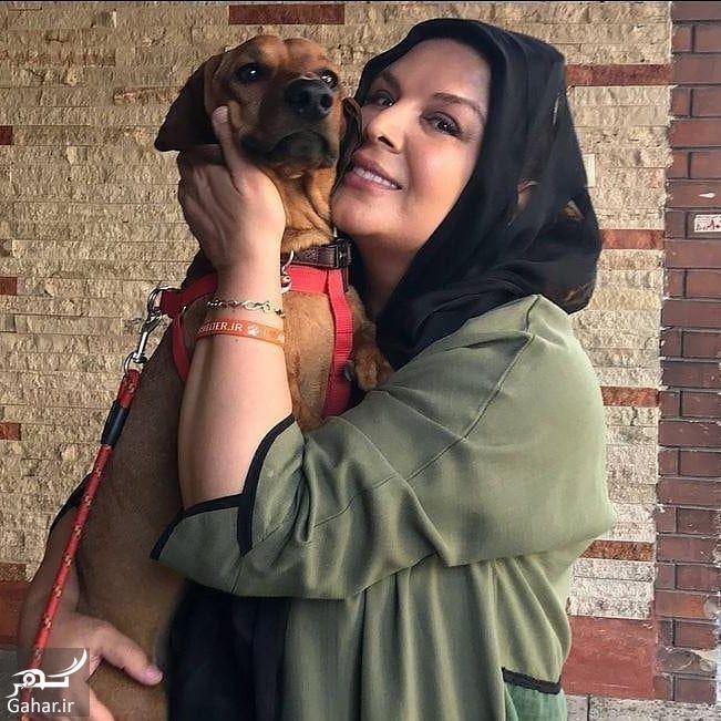 947004 Gahar ir ممنوع التصویری شهره سلطانی در تلویزیون به خاطر سگ!