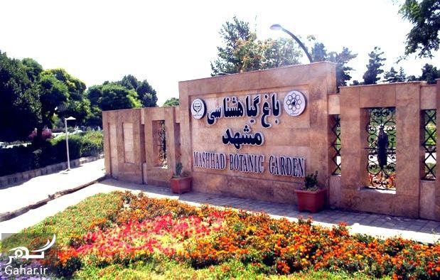 761990 Gahar ir باغ گیاه شناسی مشهد + آدرس
