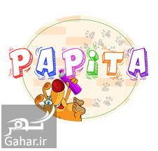 946310 Gahar ir اپلیکیشن پاپیتا چیست + دانلود اپلیکیشن پاپیتا برای اندروید