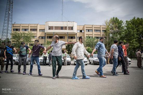 1462263453 عکس های بازداشت 131 سارق در تهران