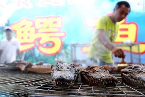 1466704727 کباب تمساح غذای پرطرفدار چینی ها + عکس