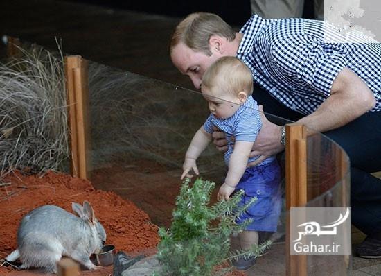 1469299296 عکس های تولد شاهزاده جرج کمبریج و سه ساله شدنش