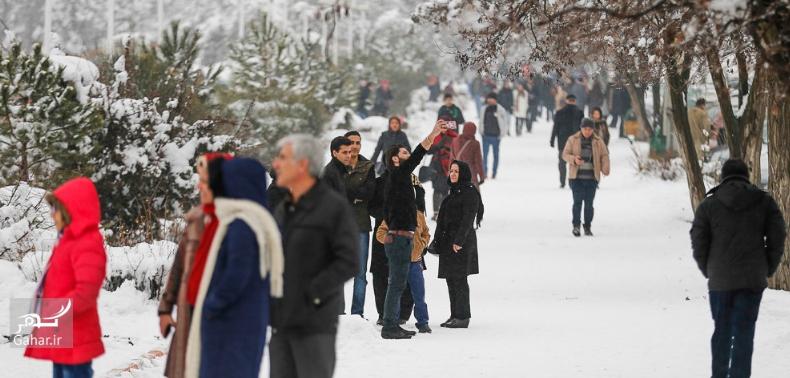 1486841951 برف بازی مردم همدان در زمستان زیبا ؛ تصاویر