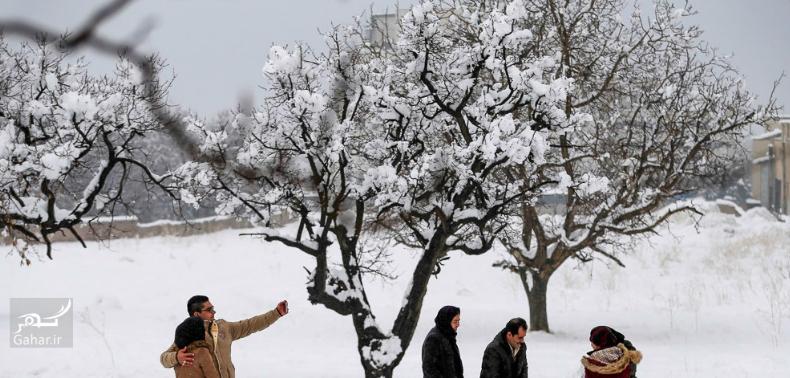 1486868387 برف بازی مردم همدان در زمستان زیبا ؛ تصاویر
