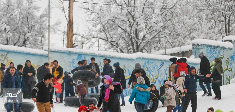 1486900884 برف بازی مردم همدان در زمستان زیبا ؛ تصاویر