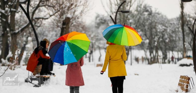 1486914984 برف بازی مردم همدان در زمستان زیبا ؛ تصاویر