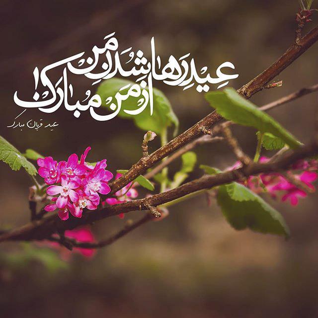 1565510439 عکس تبریک عید قربان عاشقانه