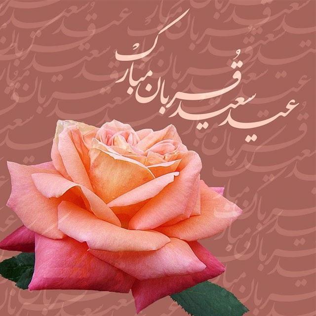 1565527624 عکس تبریک عید قربان عاشقانه