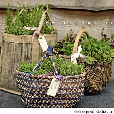 herbs 1 ایده های جالب برای پرورش سبزیجات در خانه