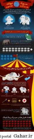 اینفوگرافیک: حقایق پنهان از شکنجه حیوانات در سیرک ها, جدید 1400 -گهر
