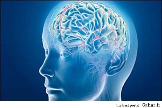 ۳ توصیه مهم برای پیشگیری از پیری مغز, جدید 1400 -گهر