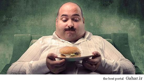 روشی برای تشخیص چاقی سالم از چاقی ناسالم, جدید 1400 -گهر