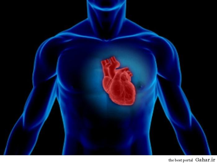 علت افزایش تپش قلب پس از افطار, جدید 1400 -گهر