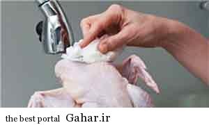 هشدار محققان درباره شستن مرغ خام, جدید 1400 -گهر