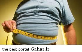 نکات ضروری برای افراد چاق, جدید 1400 -گهر
