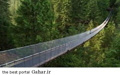 تجربه پل شیشه ای, جدید 1400 -گهر