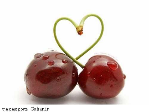 0.156542001376796272 irannaz com زیباترین عکس های عاشقانه اردیبهشت 94