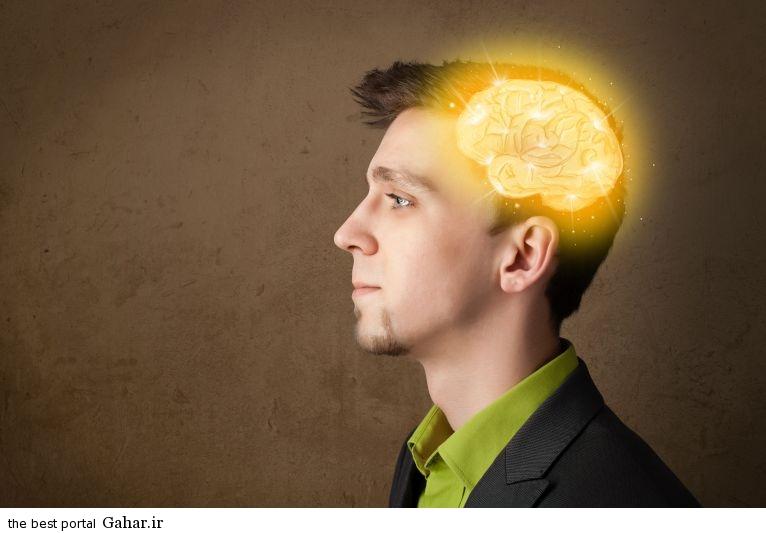 Maghz faal مغزتان را با این کارها فعال کنید