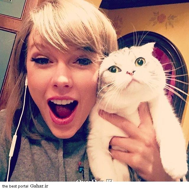 عکس جدید تیلور سوئیفت در کنار گربه اش, جدید 1400 -گهر