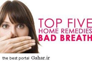 boo راه های مؤثر و خانگی برای از بین بردن بوی بد دهان