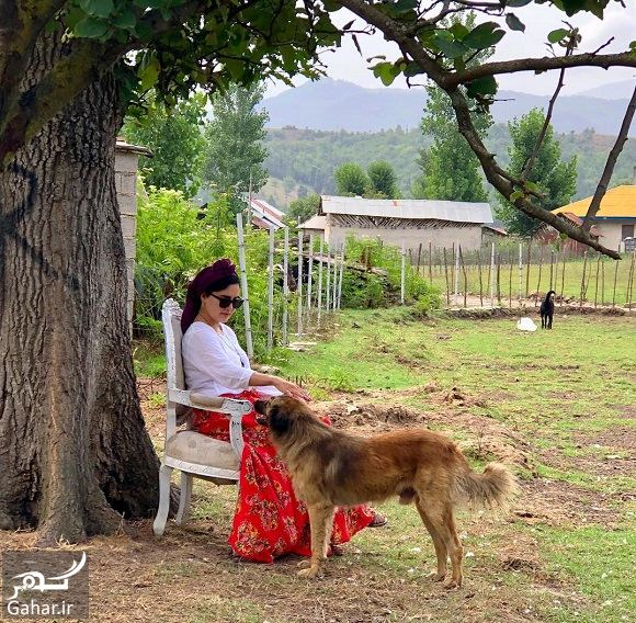 عکس و متن خاص الناز شاکردوست کنار سگش, جدید 1400 -گهر