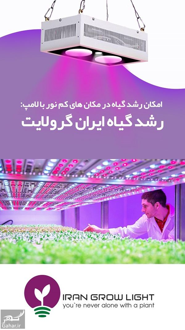 304883 Gahar ir چراغ رشد گیاه برای گیاه دوستانی که منازل کم نور دارند!
