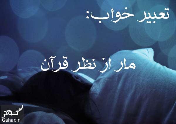 338606 Gahar ir تعبیر خواب مار از نظر قرآن