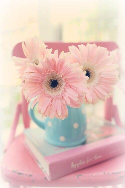 127097 Gahar ir عکس گل های زیبا برای پروفایل