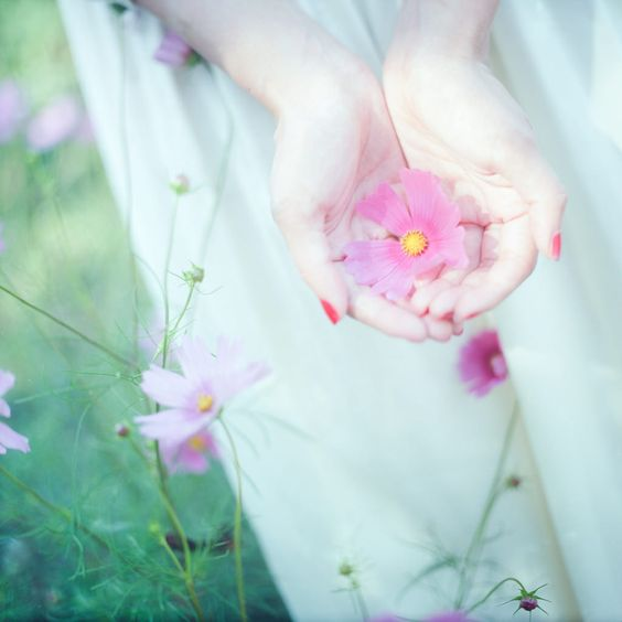 139622 Gahar ir عکس گل های زیبا برای پروفایل