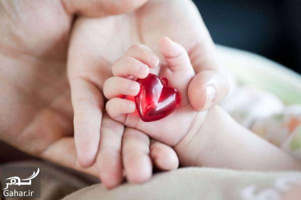 142636 Gahar ir زمان تشکیل قلب جنین