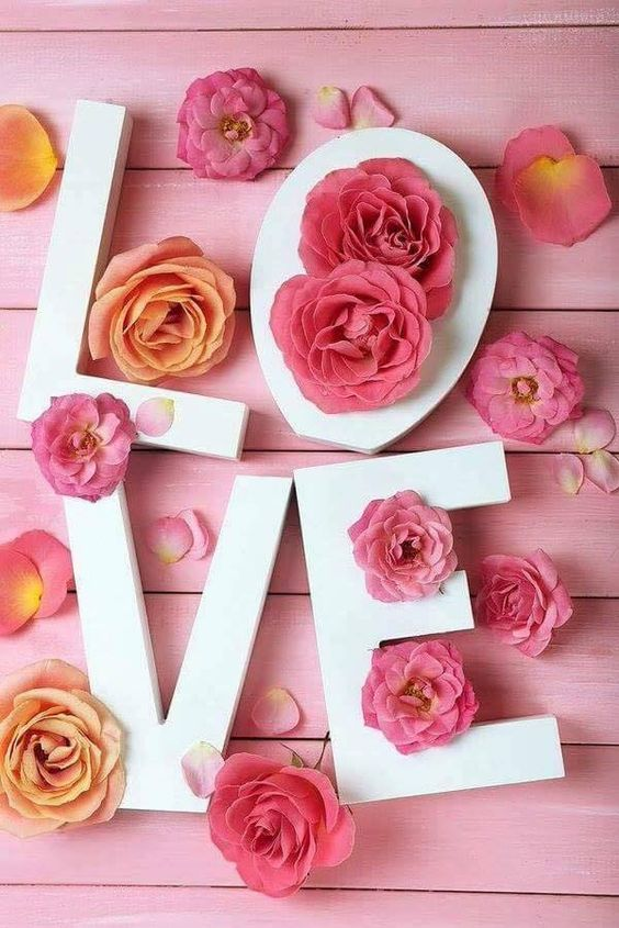 427455 Gahar ir عکس گل های زیبا برای پروفایل