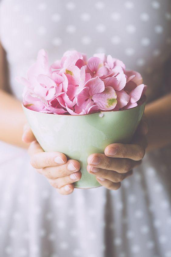 778272 Gahar ir عکس گل های زیبا برای پروفایل