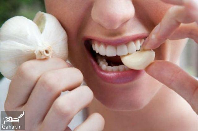 درمان دندان درد با سیر, جدید 1400 -گهر