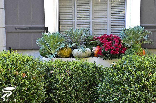 166456 Gahar ir 11 پیشنهاد جذاب برای گل کاری گلدان جلوی تراس و پنجره