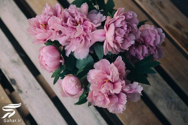 188934 Gahar ir بهترین گل ها برای هدیه دادن و مناسبت ها کدامند؟