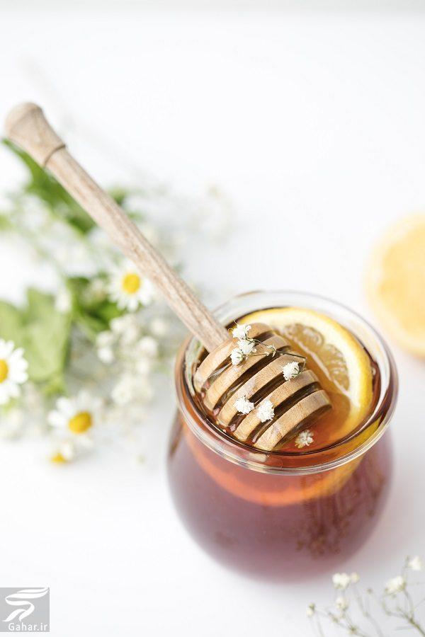 609231 Gahar ir مواد غذایی مفید برای درمان سرماخوردگی