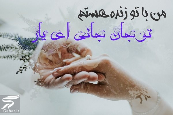 705941 Gahar ir تبریک تولد عشق جان