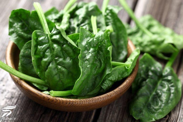 852045 Gahar ir مواد غذایی مفید برای پیشگیری از آلزایمر