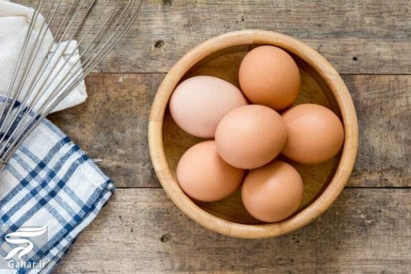 651655 Gahar ir مهمترین خواص تخم پرندگان را بدانید