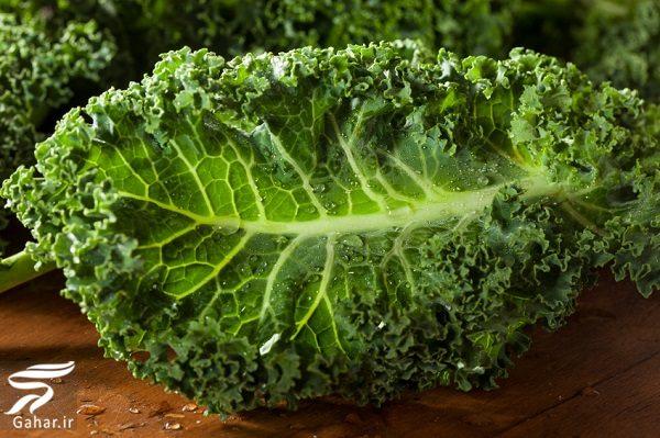 685221 Gahar ir معرفی چند مواد غذایی مقوی برای مردان که باید بخورند
