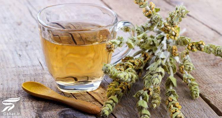 شناخت خواص دارویی و درمانی چای کوهی