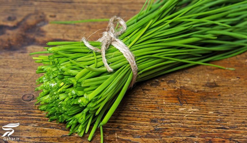 249779 Gahar ir خواص انواع سبزی خوردن را بدانید
