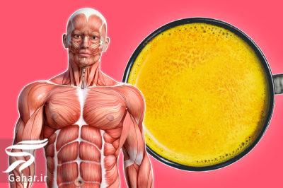 خواص شگفت انگیز شیر زردچوبه برای بدن, جدید 1400 -گهر