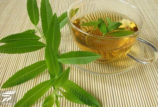 مهمترین خواص برگ به لیمو برای سلامت بدن, جدید 1400 -گهر