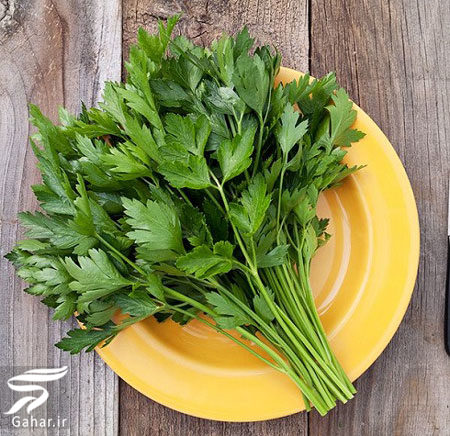 796910 Gahar ir خواص انواع سبزی خوردن را بدانید