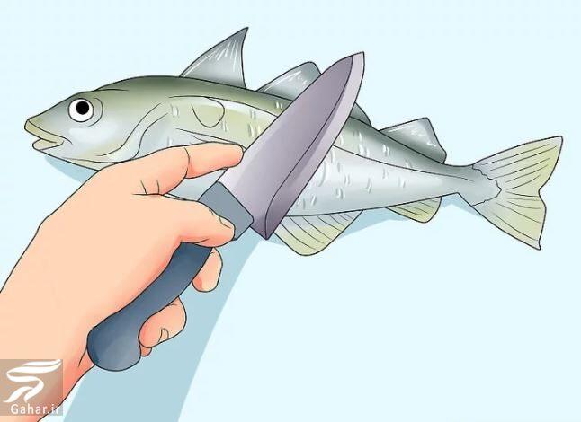 284480 Gahar ir نحوه تمیز کردن ماهی به صورت تصویری و از بین بردن بوی آن