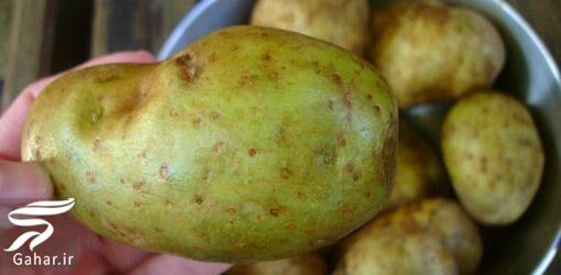 946691 Gahar ir خطر استفاده از سیب زمینی جوانه زده چیست !؟