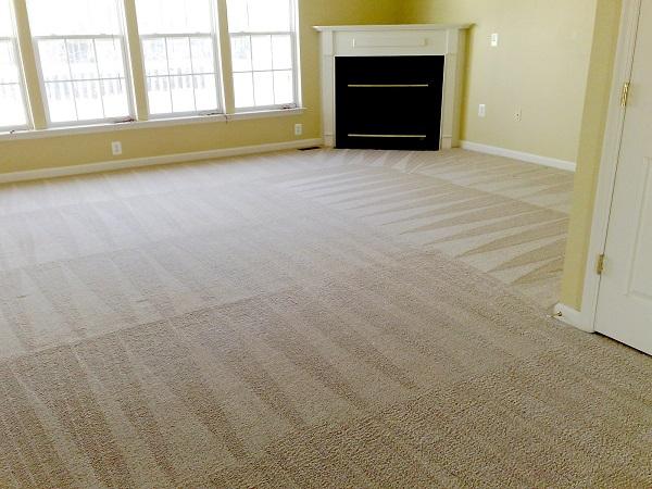 چگونه فرش خود را بدون جارو برقی کشیدن تمیز کنیم؟, جدید 1400 -گهر