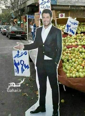 محمدرضا گلزار : موز ۲۹۰۰ تومان ؛ عکس, جدید 99 -گهر